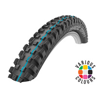 Schwalbe Addix Magic Mary Evolution Folding Tyre